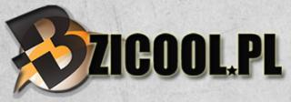 bzicool